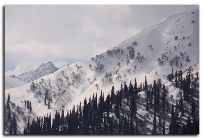 Mount Afarwat